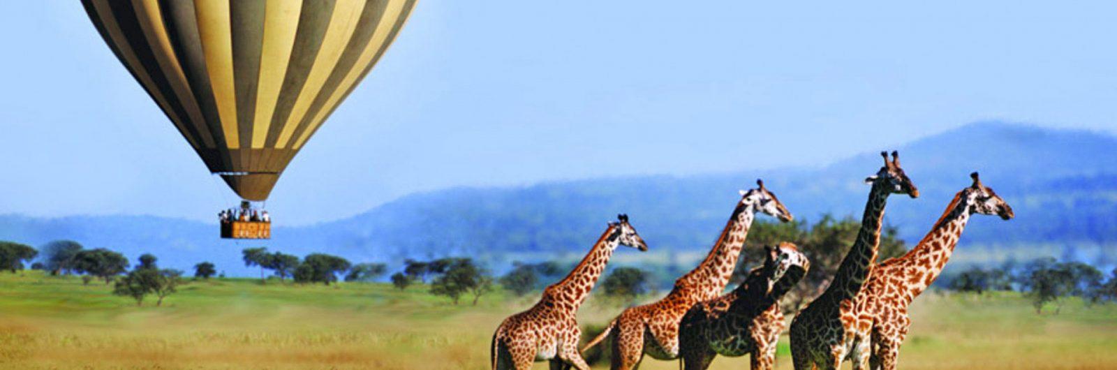 Tanzania Safari & Tour 2019