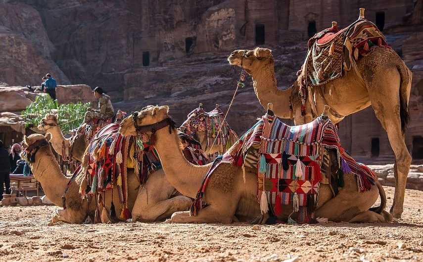 JORDAN AND PETRA: WONDERS OF THE DESERT 2021